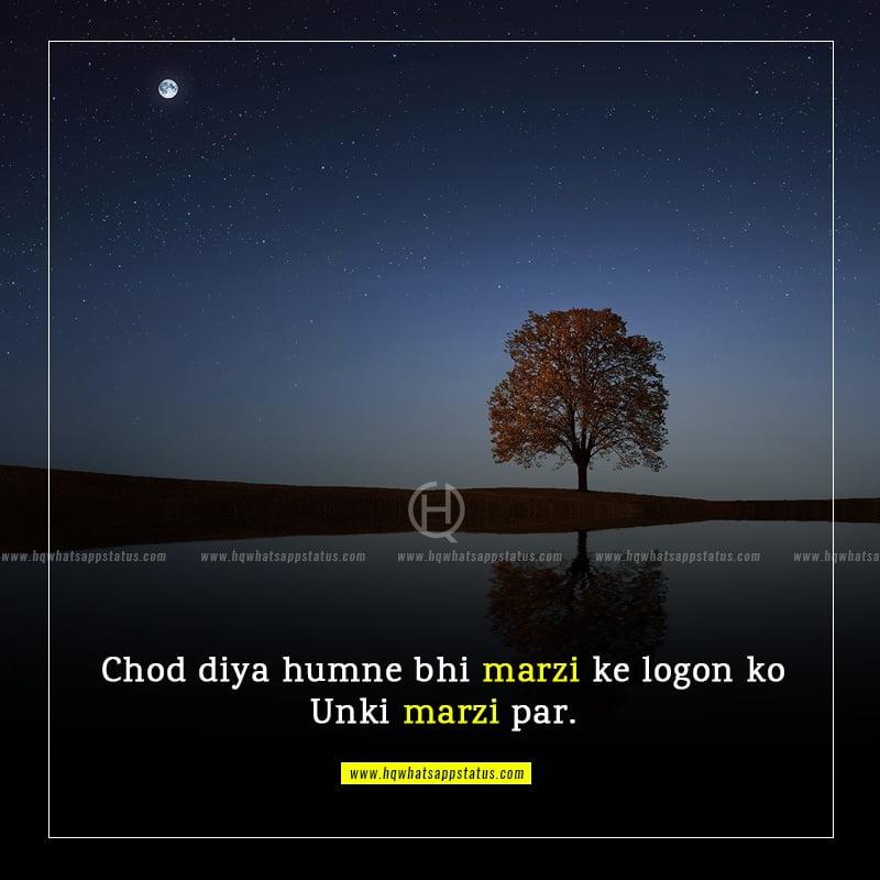 best hindi one lines status
