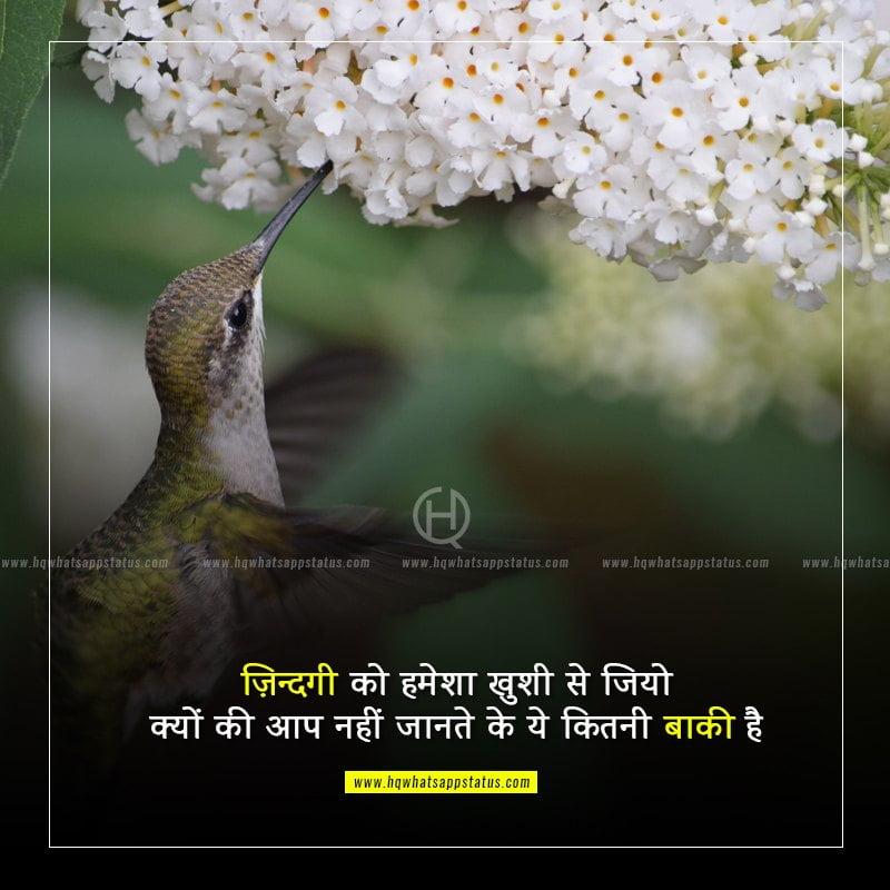 enjoy life status in hindi