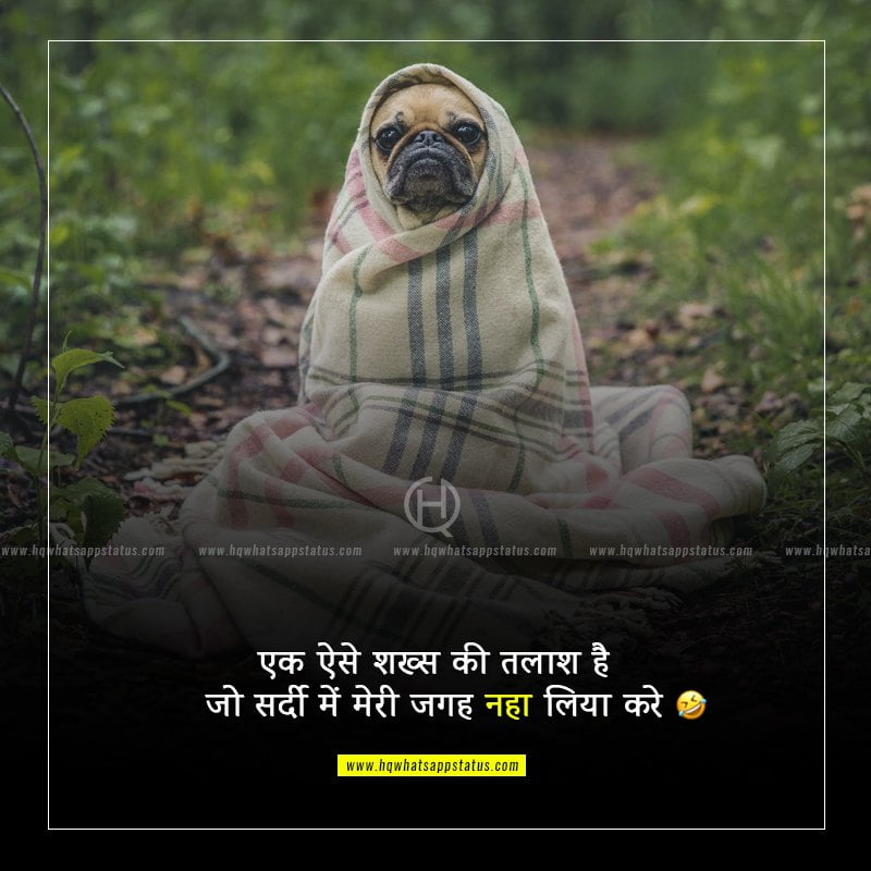 friends status in hindi funny