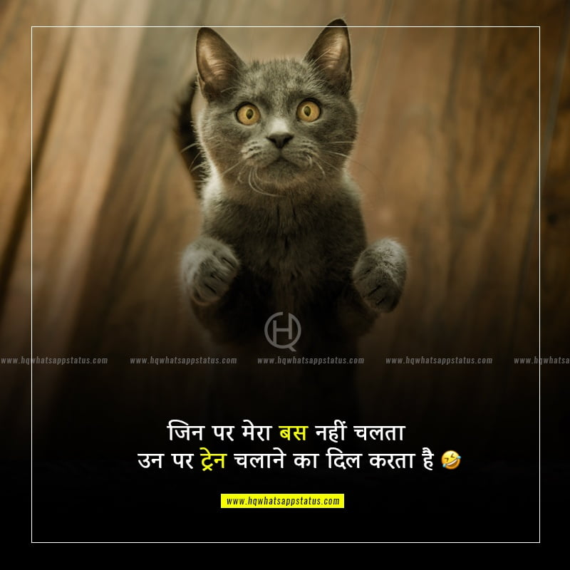 friendship funny status in hindi