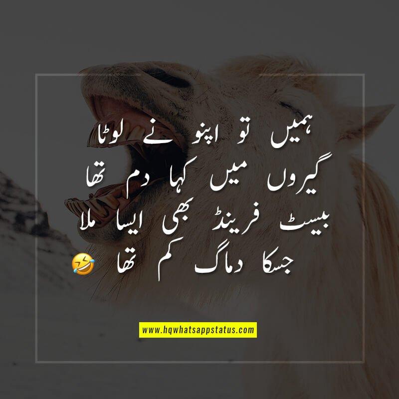 Friendship quotes in urdu facebook