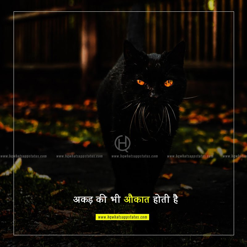 one line status in hindi font