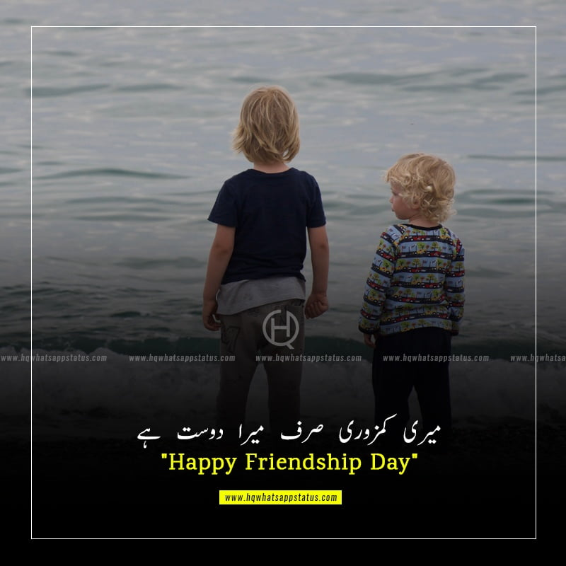 rose pictures with friendship quotes in urdu