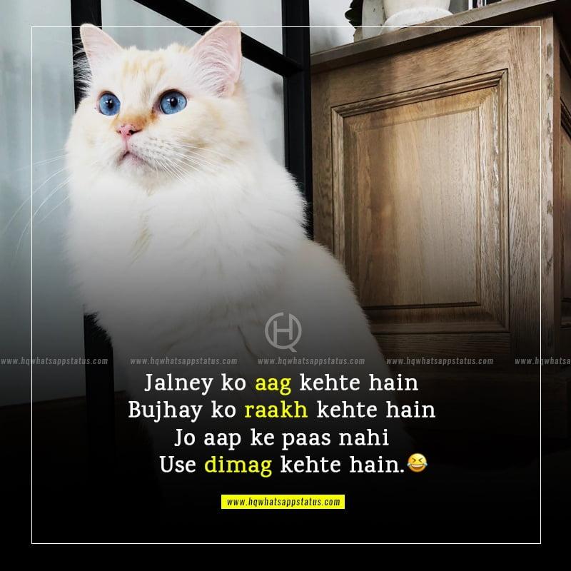 funny fb status in urdu