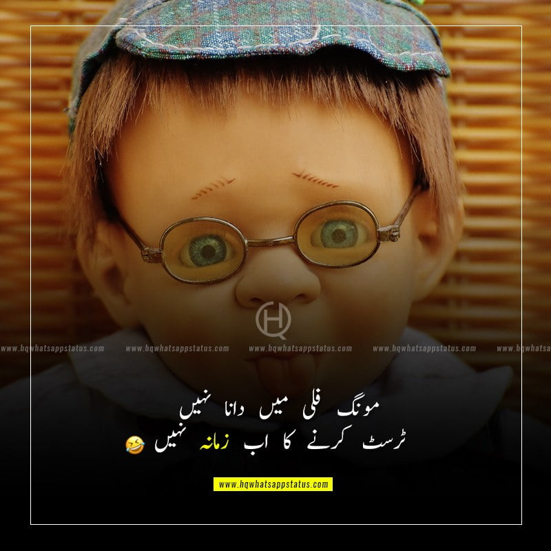 funny quotes in urdu for husband