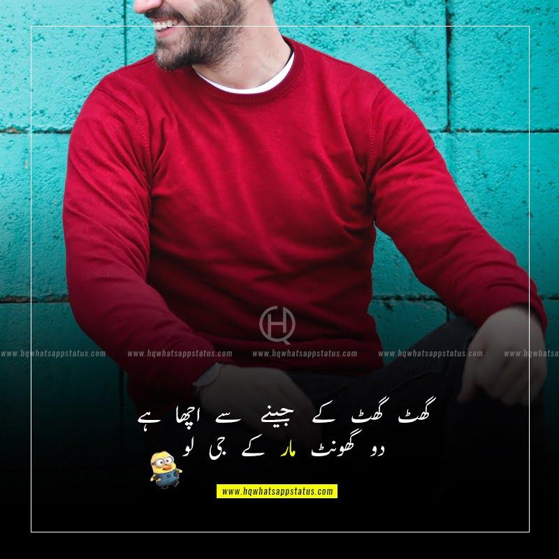 funny status in urdu for friends