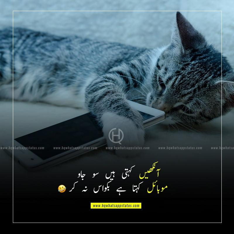 most funny jokes in urdu