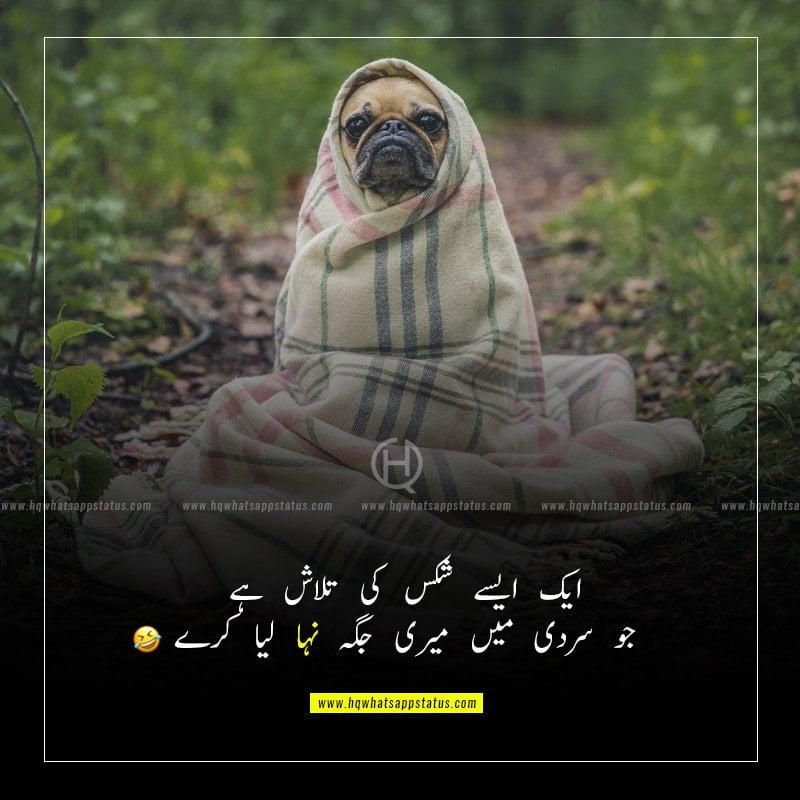 sardi funny status in urdu