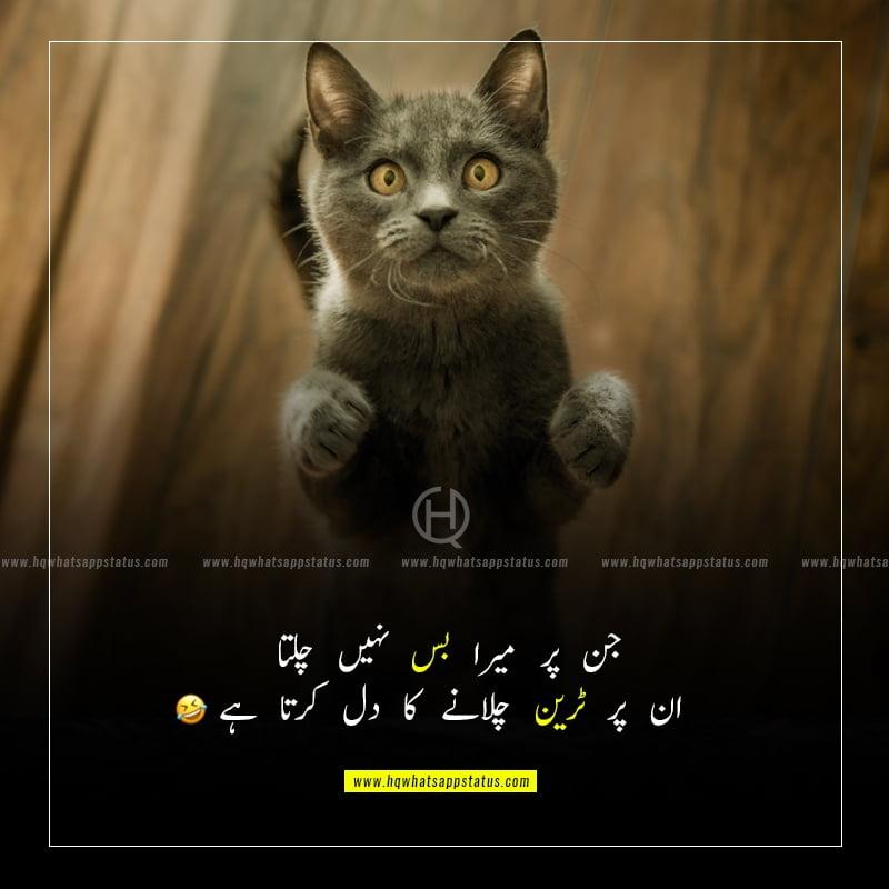 very funny status in urdu