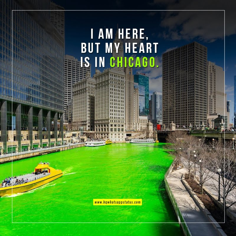 chicago sayings quotes