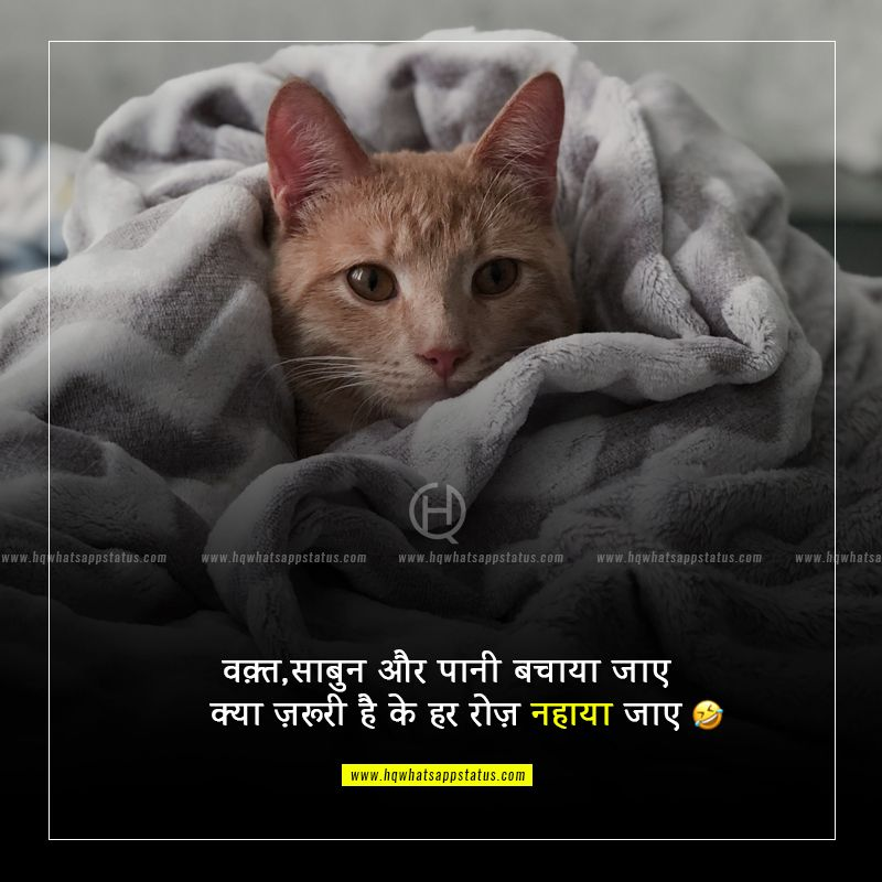 comedy quotes in hindi