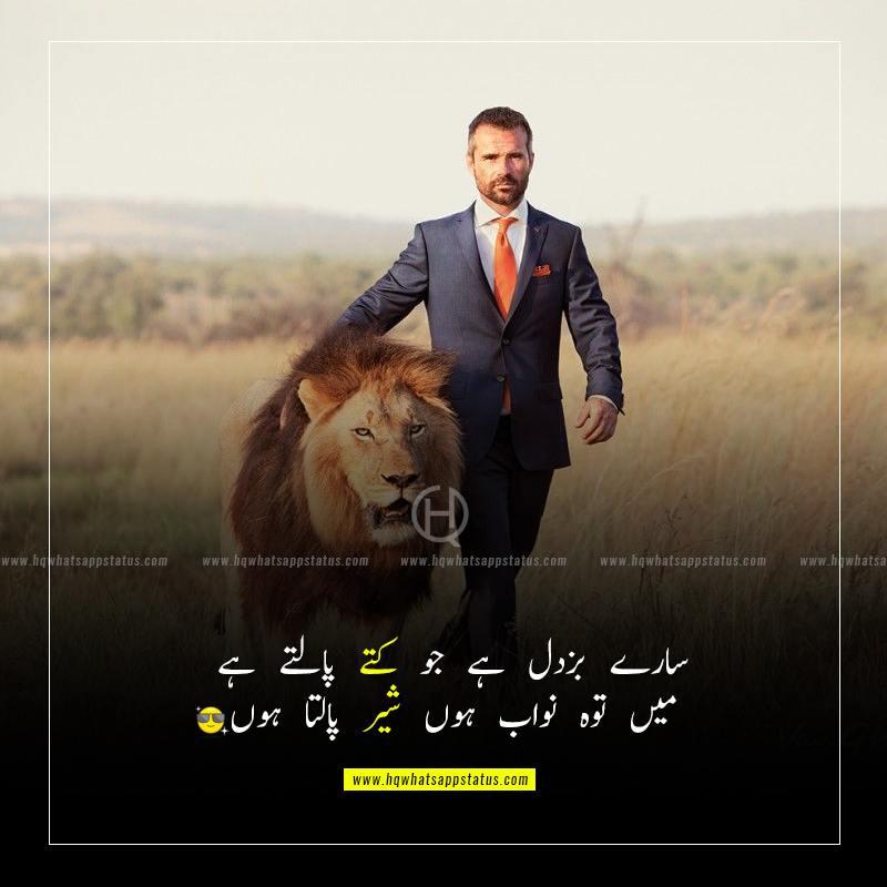 lion attitude quotes in urdu