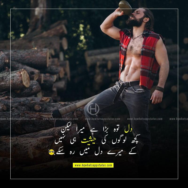 quotes on attitude in urdu