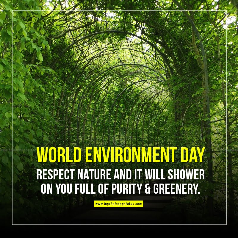 environment day message