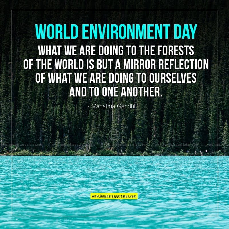 quotes on environment day