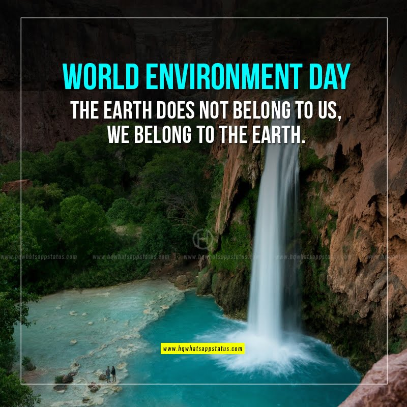 slogan on environment day