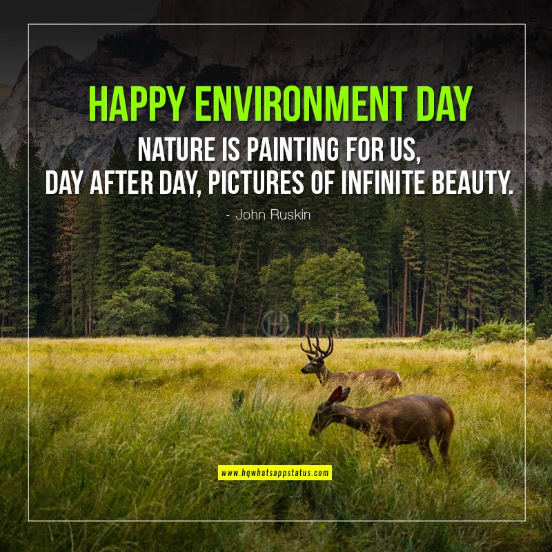 slogans on environment day