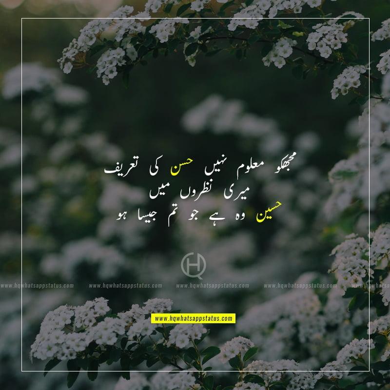 about beauty poetry in urdu