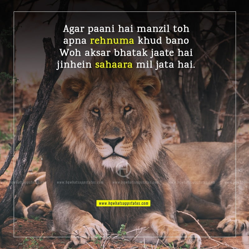 best success shayari in hindi