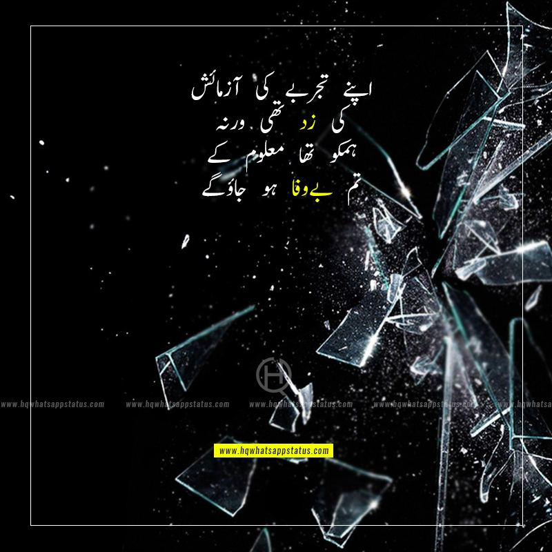 bewafa shayari in urdu 2 lines