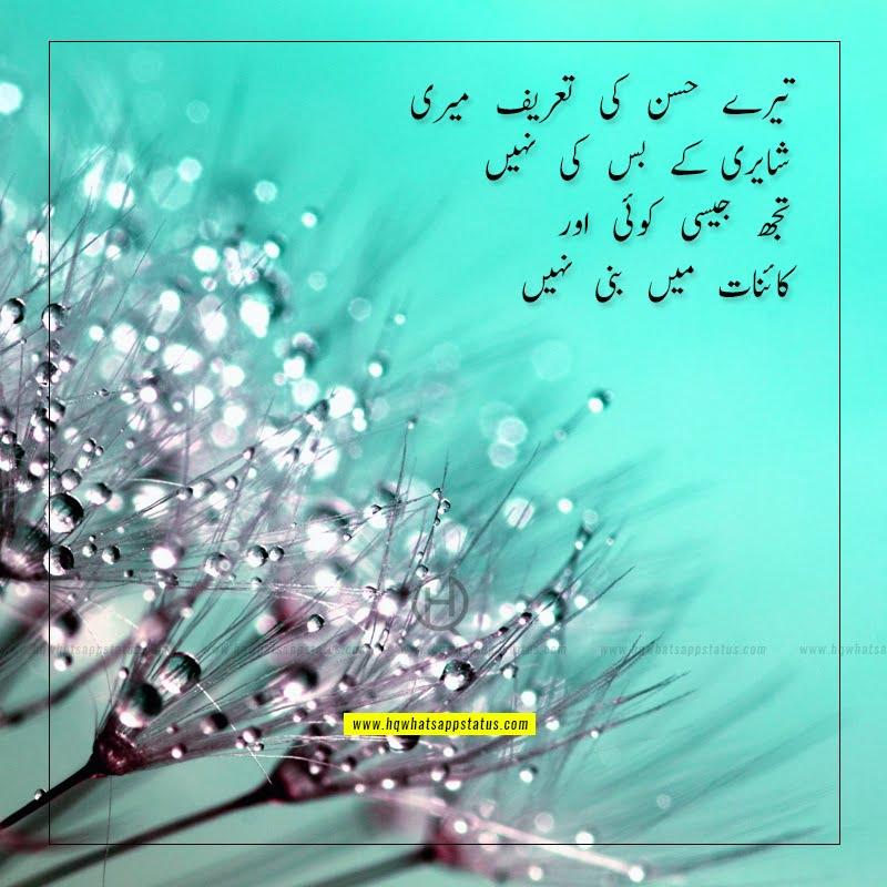biwi ki tareef shayari in urdu
