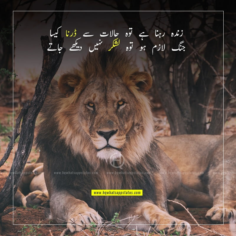 inspirational shayari in urdu