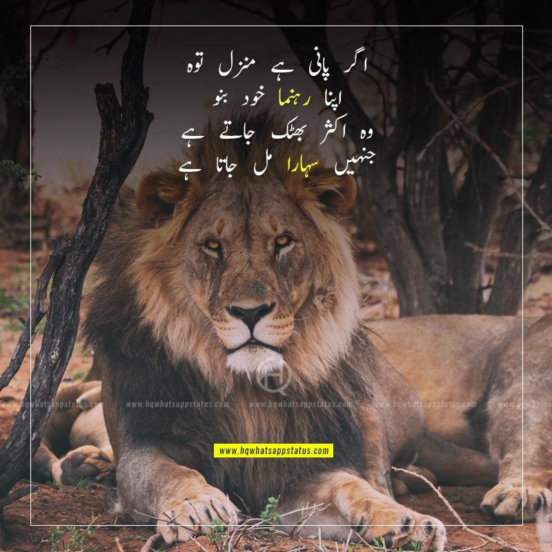 poetry for success in urdu