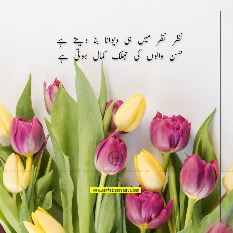 tareef shayari for beautiful girl in urdu