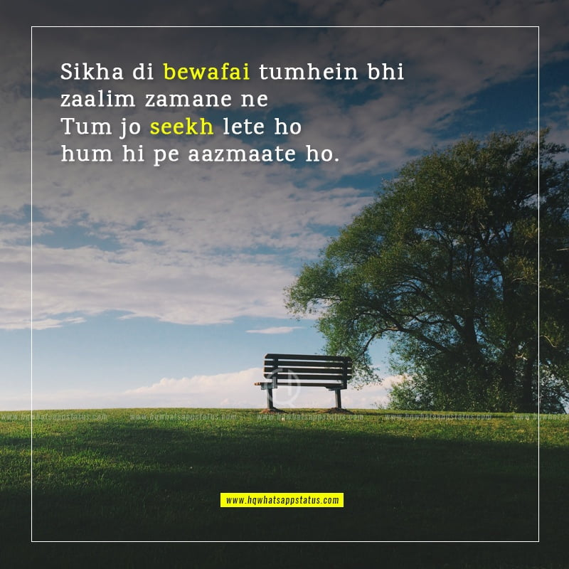 urdu bewafa shayari image